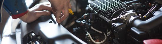 Import Auto Service Oil Change
