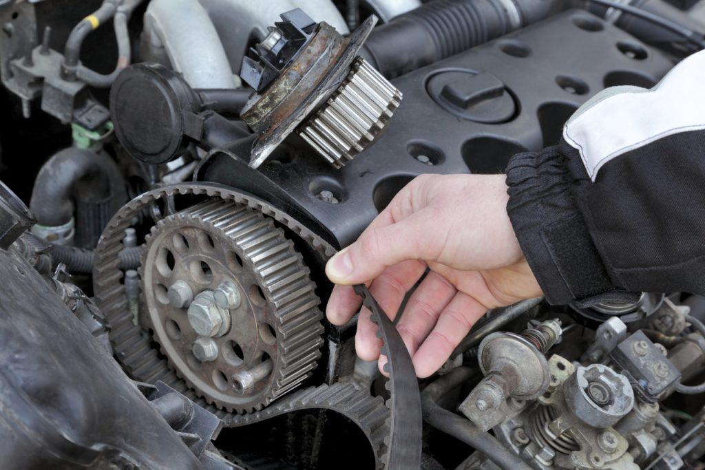 Import Auto Services Belts and Hoses for a wide variety of makes and models